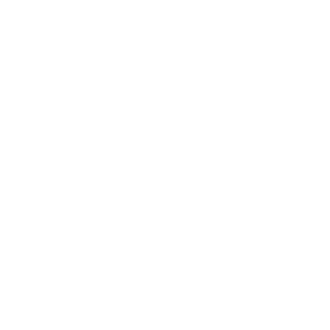 Simple grill Recipe logo
