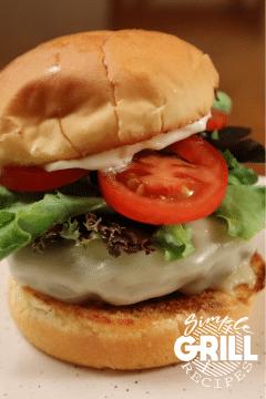 image of a burger